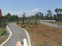 Vista de la azotea verde (3). (Foto: Juan Martínez Cruz)