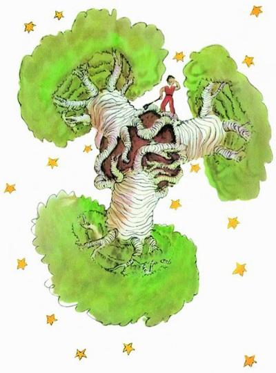 """Los temidos baobabs de """"El principito""""."""