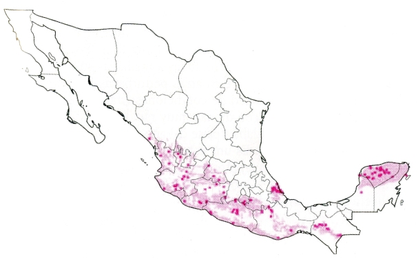 La pochota se distribuye en las zonas de color.